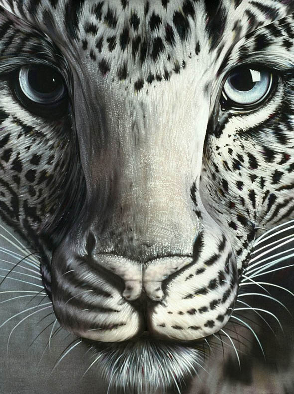 snow leopard illusion craig tracy