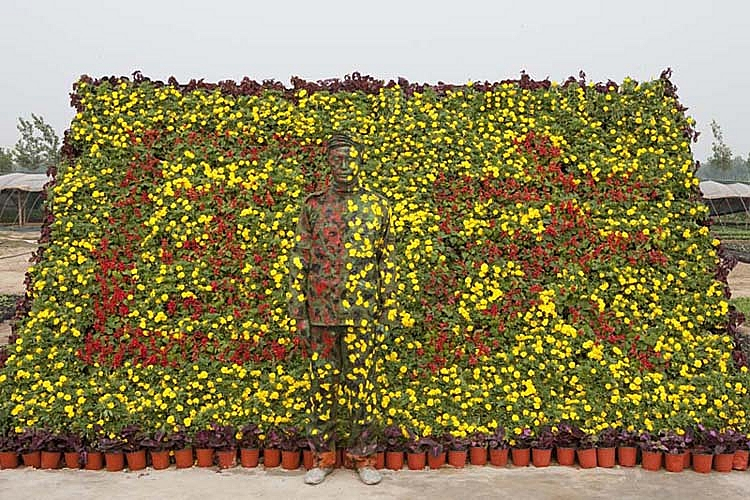 flower illusion liu bolin