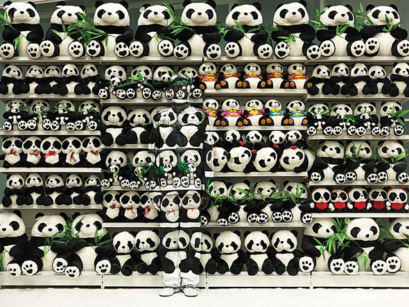 panda illusion liu bolin