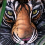 Craig Tracy's Tiger Illusion